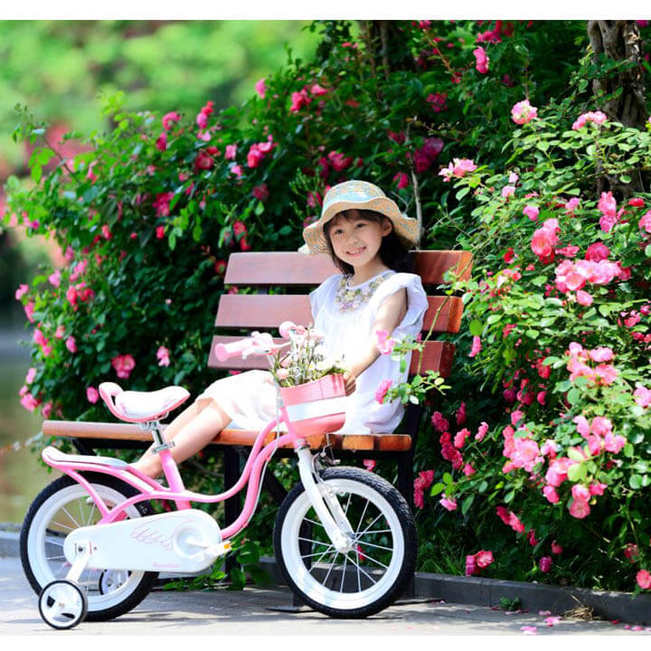 Xe đạp Royal Baby RB-18